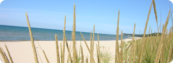 Things to Do at Silver Lake Sand Dunes: The Ultimate Pure ... |Lake Michigan Attractions